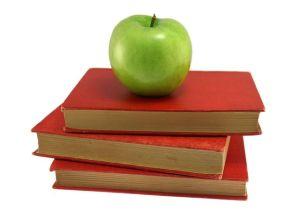 個別指導塾で算数を分かる子供を育てる方法